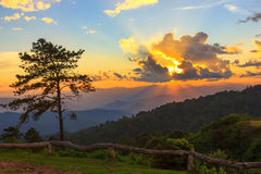 Foschia e nebbia di mattina che si muovono lentamente dal punto di vista nell'alba all'alta montagna in Chiangmai, Tailandia Fotografie Stock Libere da Diritti