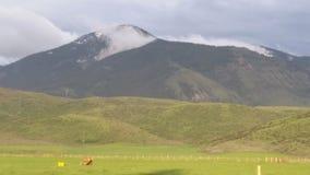 Foschia sulla montagna Fotografia Stock