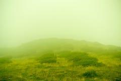 Foschia verde della montagna fotografia stock libera da diritti