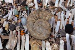 Fosil i en stor kartbok Marocko, Fotografering för Bildbyråer