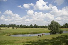 Fossé de fort Elden Westerveld Photographie stock