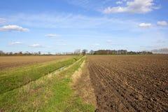 Fossa dell'azienda agricola con i campi arati Fotografie Stock Libere da Diritti