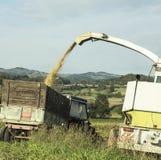 Fossa dell'azienda agricola del sale Immagine Stock