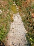 Fossa di irrigazione inaridita Fotografia Stock Libera da Diritti