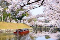 Fossato di Hikone Castle Fotografia Stock Libera da Diritti