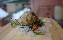 Fossiele slak, rozemarijn, rode bes en lavendel op mijn organisch terras royalty-vrije stock foto