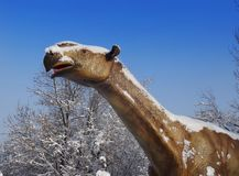 Fossil animal Paraceratherium. Jn blue sky in the park stock photography