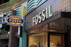 Fossil Stock Photography