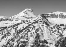 Fossil- berg i vintern, monokrom Arkivfoto