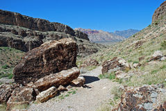 Fossil Canyon near Red Rock Canyon, Nevada. Royalty Free Stock Photo
