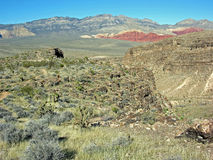 Fossil Canyon and Red Rock Canyon, Nevada. Fossil Canyon, seen at the right is made of Permian (280 million years ago) sea deposits. In the background is part royalty free stock photography