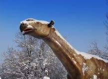 Fossil- djura Paraceratherium Arkivbild