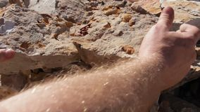 Fossil Excavation and Extraction. 'Fossicking', Fossil hunting excavation and extraction using a pick to spilt rocks to expose fossils. This is commonly done by stock footage