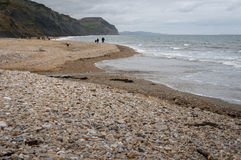 Fossil hunting at Charmouth. Pebble beach, sea and cliffs at Charmouth on the Jurassic coast, with people hunting for fossils in the distance Stock Photography