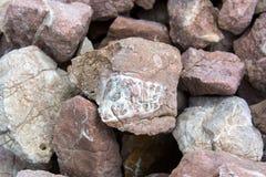 Fossil im Stein Paläontologisches Impressum einer Beschaffenheit auf einem Stein Lizenzfreie Stockfotos