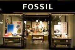 Fossil- modelager Arkivfoton