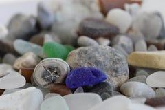 Fossil och exponeringsglas Fotografering för Bildbyråer