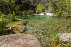 Fossil Springs Creek Arizona. Royalty Free Stock Images