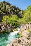 Fossil springs creek Arizona. Stock Photos