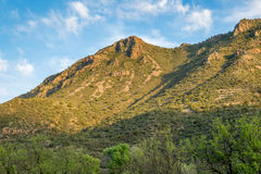 Fossil springs creek Arizona. Royalty Free Stock Photo