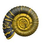 fossil występować samodzielnie Zdjęcia Stock