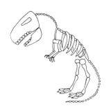 Fossile de rex de tyrannosaure Photographie stock