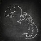 Fossile de rex de tyrannosaure Photographie stock libre de droits