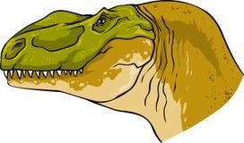 Fossile di dinosauro feroce naturale capo di tirannosauro Fotografie Stock
