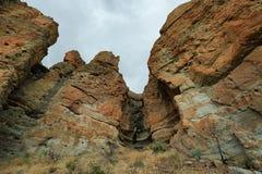 Fossile di un albero nelle rocce delle palizzate Immagini Stock Libere da Diritti