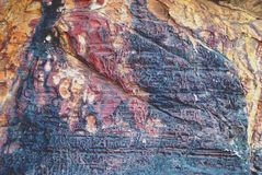Fossile en pierre Images libres de droits