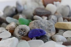 Fossile et verre Image stock
