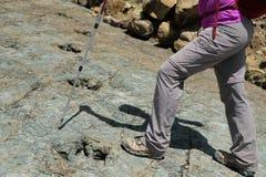 Fossiles d'impression de dinosaure en cratère de Maragua La Bolivie avec le randonneur photo libre de droits