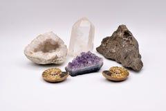 Fossiles et gemmes sur le fond blanc Photographie stock libre de droits