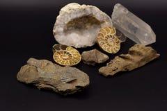 Fossiles et gemmes sur le fond noir Photographie stock