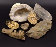 Fossiles et gemmes sur le fond noir Images stock