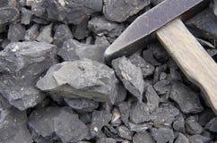 Fossili e un martello Fotografia Stock