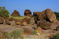 fossilien Lizenzfreie Stockbilder