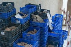 Fossilien, die warten, in einem MuseumsSpeicherbereich Katalogisiert zu werden Lizenzfreie Stockfotos