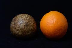 Fossilised orange Royalty Free Stock Photography