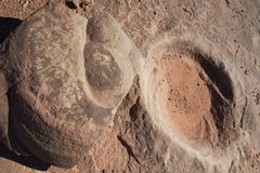 Fossilized dinosaur dung. Turd or excrement and the indent it left in the stone when it was removed, near Tuba City, AZ, US stock photography