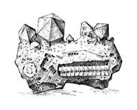 Fossilized plants, stones and minerals, crystals, prehistoric animals, archeology or paleontology. fragment fossils. Engraved hand drawn in old sketch and Stock Images