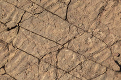 Fossilized Ripples in Fractured Sandstone Useful as Background o Royalty Free Stock Photos