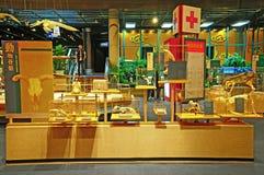 Fossils hong kong museum Royalty Free Stock Image