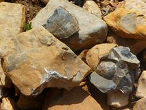 Fossils of the Permian period. Found on the bank of the river Stock Photo