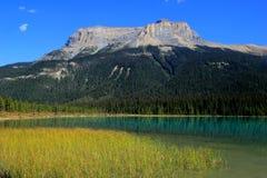 Fossils Range at Emerald Lake, Yoho National Park, Canada Stock Image