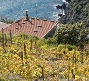 Fossola Cinque Terre National park. Locality: La Spezia (SP). Italy Stock Image