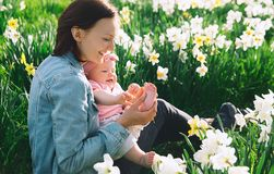 Fostra och behandla som ett barn flickan i vår parkerar bland blomningfält royaltyfria foton