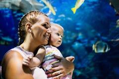 Fostra och hennes hållande ögonen på havsliv för barnet i oceanarium arkivbilder