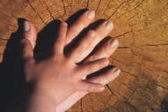 Fostra ` s och händer för son` som s lokaliseras på gammal stubbe Fotografering för Bildbyråer
