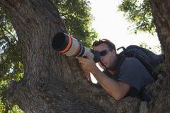 Fotógrafo Against Tree de los paparazzis Imagenes de archivo